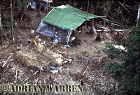 Waorani Indians :The film crew camp, rio Cononaco, Ecuador, 1983
