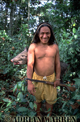 Waorani Indians : after a sucessful hunt with modern gun, Settlement near airstrip, rio Cononaco, Ecuador, 2002