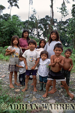 Waorani Indians : Oil company road to Gadeno, Ecuador, 2002