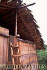 Waorani Indians : House at Tonaempaede, Ecuador, 2002
