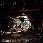 Waorani Indians : Traditional house at Cononaco airstrip, Ecuador, 2002