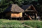 Waorani Indians : New style house at Cononaco airstrip, Ecuador, 2002