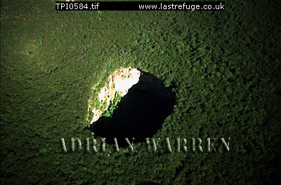 Aerials (aerial photo) of Tepuis, South America: Sarisarinama sink hole with rainforest, Jaua-Sarisari?ama National Park at the far south-west of Bol?var State, Venezuela