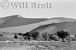Soussesvlei, Namib desert, Namibia, 1997