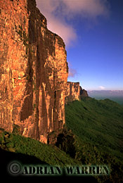 Cliff of RORAIMA from the ledge