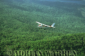 Flying over air to air shot of Cessna over forest  Near Auyantepui
