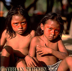 Waorani Indians : children, using Achiote for decoration